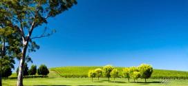 SA Property Guide